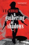 A Gathering Of Shadows Schwab